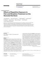 Effects of Repetitive Exposure to Pain and Morphine Treatment on the Neonatal Rat Brain.pdf.pdf