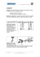 Conexao.pdf