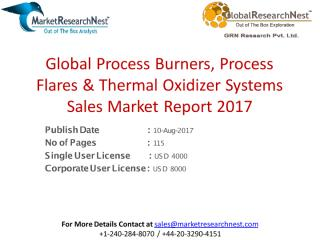 Global Process Burners, Process Flares & Thermal Oxidizer Systems Sales Market Report 2017.pdf