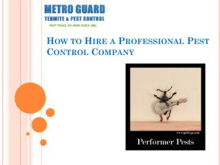 How to Hire a Professional Pest Control Company in Dallas.pdf