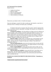 OS 5 DESAFIOS DAS EQUIPES.doc