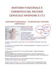 ANATOMIA FUNZIONALE RCJ.doc